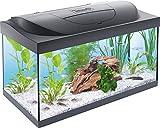 Tetra Starter Line LED Acuario 54 L - Juego completo que incluye iluminación LED, un acuario estable para principiantes con tecnología, alimentos y productos de cuidado, negro