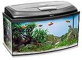 Aquael Set de Acuario Classic LT, Incluye Cubierta, Filtro, Calentador, iluminación LED (60 x 30 x 30 cm, Curvado)