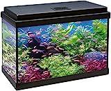 ICA KDI50 Kit Aqua-Led 50 con Filtro Interior, Negro