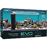Fluval 10528A1 EVO V Marine Aquarium Kit, 5 galones