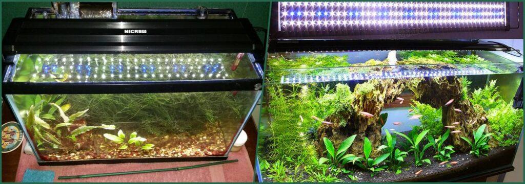 iluminacion para nano acuarios