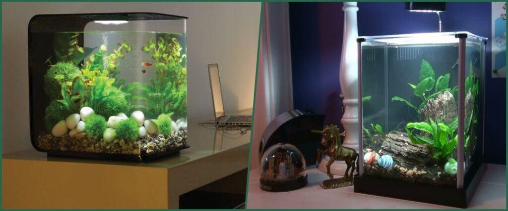 acuario nano con tapa ubicar en casa evitar aire