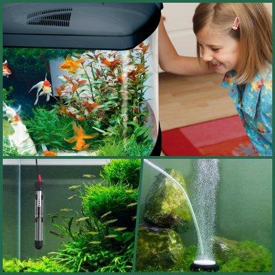 condiciones interiores acuario ubicar en casa