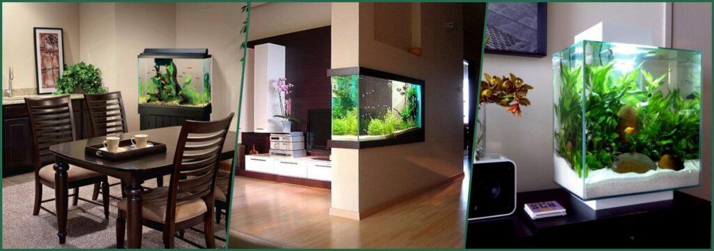 donde ubicar colocar acuario en casa