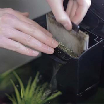 limpiar filtro acuario nano