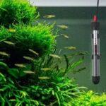mejor termocalentador acuario pequeño