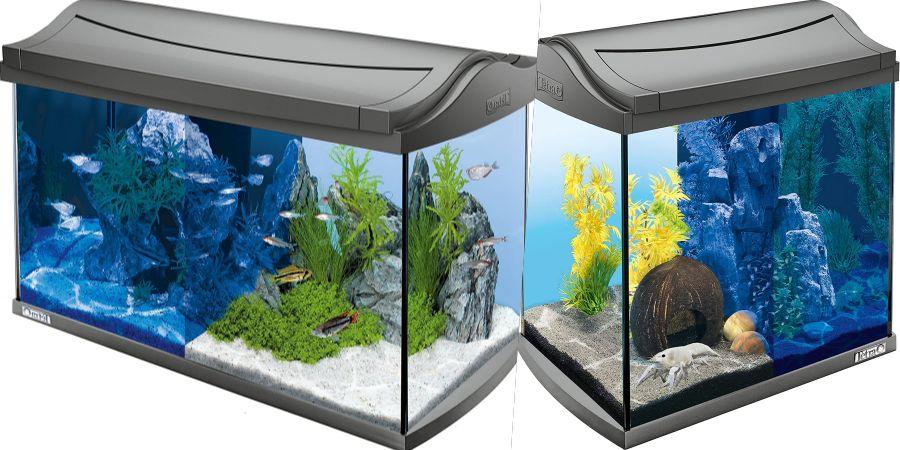 tetra aqua art discovery line comprar